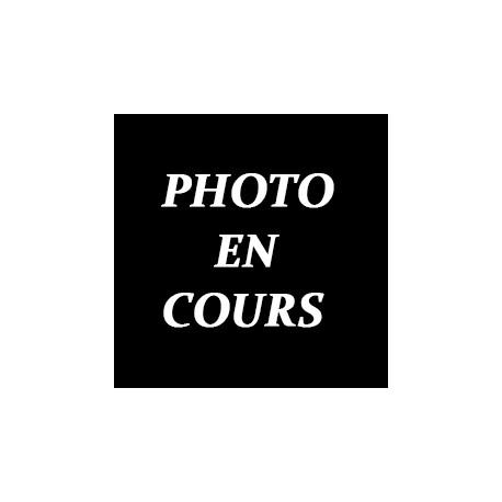 Aile Arrière R5 GT TURBO